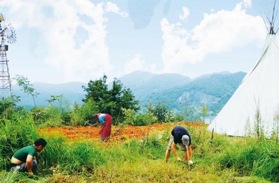 PermacultureSite