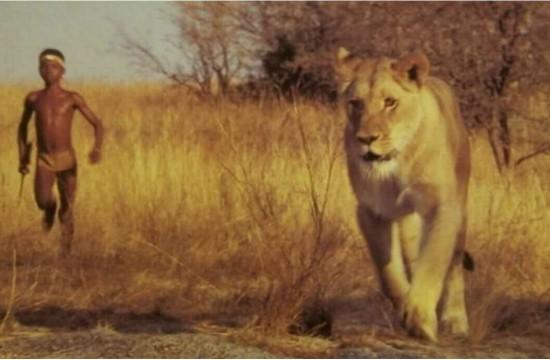 projection-du-film-l-enfant-lion-1565198705